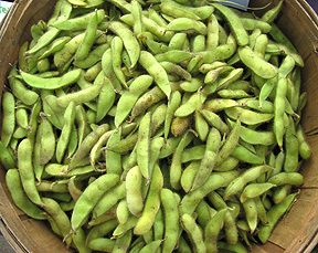 basket-of-soybeans